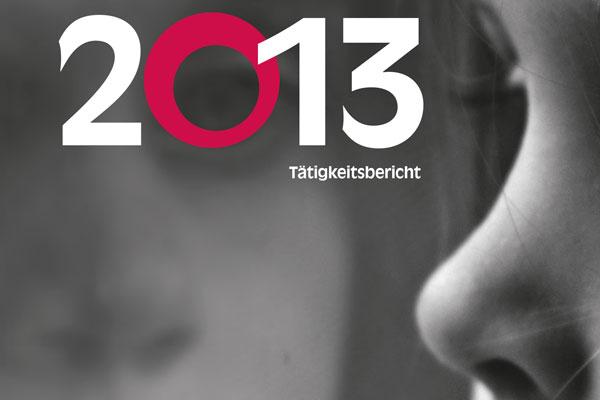 Titelbild des Jahresberichts 2013
