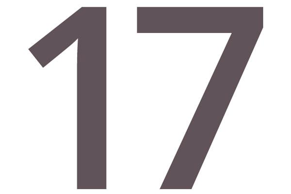 Beispielbild für Jahresbericht 2017